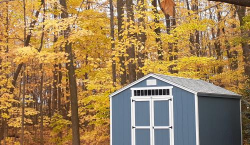 Cottage storage shed in the woods