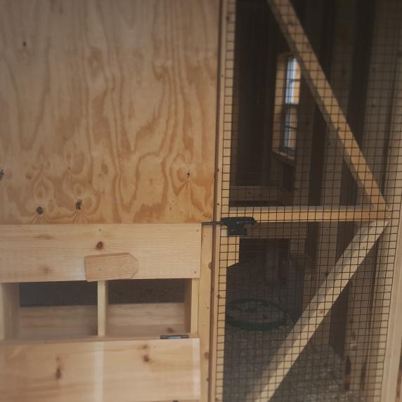 8x10 Stained Board and Batten Chicken Coop A-Frame style Belleville Ontario interior feedroom
